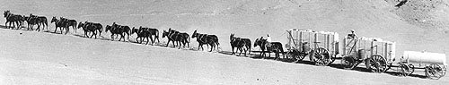 Borax: The Twenty Mule Team.