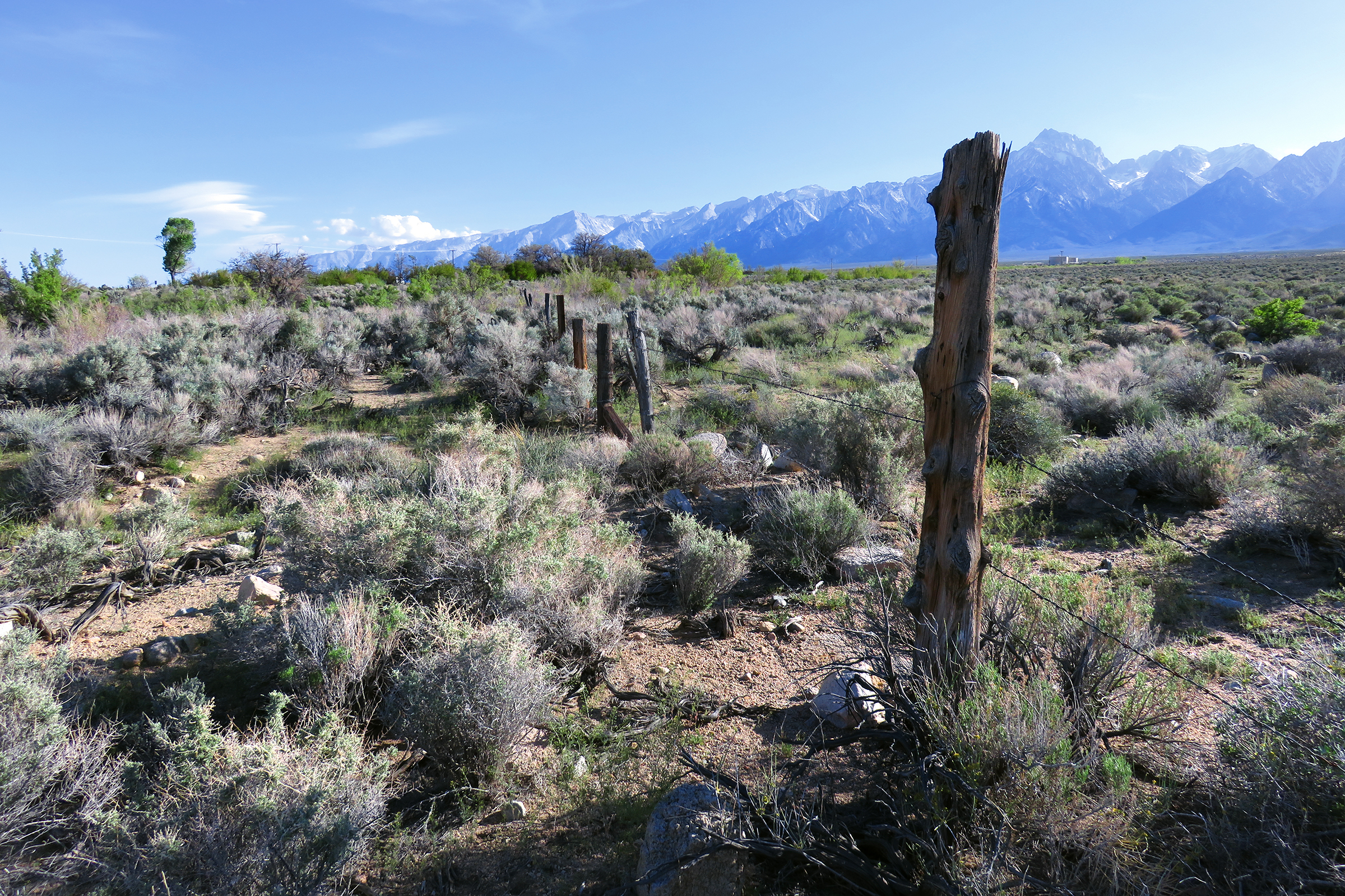 the owens valley paiute indians Tribes of the new southwest region  big pine paiute tribe of owens valley see paiute group big valley band of pomo indians of the big valley rancheria.